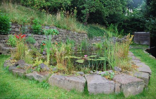 Gartenteich naturteich mit trockenmauer und sitzsteinen for Naturteich garten